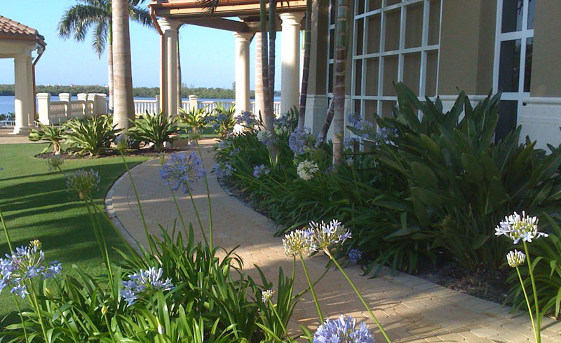 Marina Village at Tarpon Point Landscaping Maintenance